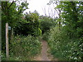 TM2956 : Little Lane Bridleway to Broad Road by Adrian Cable