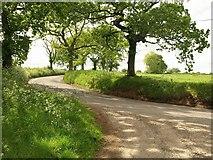 SS7811 : B3042 at Five Oaks Moor by Derek Harper