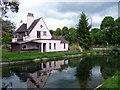 TL3706 : New River, Broxbourne, Hertfordshire by Christine Matthews