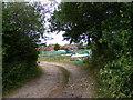 TM2956 : The entrance to Wickham Market Allotments by Adrian Cable