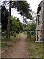 TM3055 : Path in All Saints Churchyard by Adrian Cable