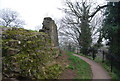 TQ5846 : Ruined wall, the Motte, Tonbridge Castle by N Chadwick