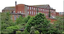 J2865 : Former Barbour's Mill, Hilden (4) by Albert Bridge