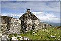 NR4095 : Riasg Buidhe by Tom Richardson