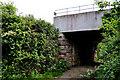 J4782 : Railway bridge near Crawfordsburn by Albert Bridge