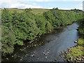 NY7287 : River North Tyne near Falstone (1) by Stephen Richards