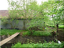 NT5575 : Rural East Lothian : Outbuildings and Mill Lade at Sandy's Mill by Richard West