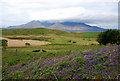 NM4789 : Grazing Land by Glen Breaden