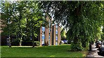 J3271 : Nos 36-38 Windsor Park, Belfast (3) by Albert Bridge
