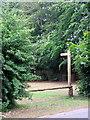 SO9975 : Judith's Way, Finger Post - Lickey Hills by Roy Hughes