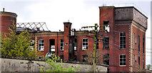 J2865 : Former Barbour's Mill, Hilden (7) by Albert Bridge