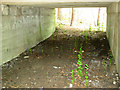 TG4600 : East Suffolk line through Waveney Forest - bridged culvert by Evelyn Simak