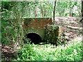 TM4599 : East Suffolk line through Waveney Forest - bridged culvert by Evelyn Simak