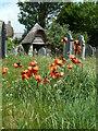 SX6494 : Quaker Burial Ground, Sticklepath by Chris Allen