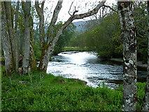 NN7421 : River Earn near Aberuchill, Perthshire by Anthony O'Neil