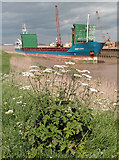 TA0623 : View from the Humber Bank Footpath by David Wright