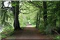 NN8421 : Lady Mary's Walk by Martin Addison