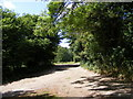 TM3266 : Footpath to Shrublands Farm & entrance to White House & Hill Top Farm by Geographer