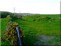 NS2272 : Former Shielhill Glen railway by Thomas Nugent