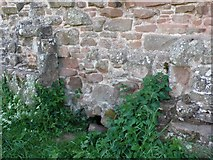 SP2772 : Sewage outlet Kenilworth Castle by Nigel Mykura