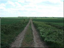 TL3382 : Looking towards the edge of the Cambridgeshire Fens by Richard Humphrey
