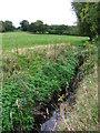 TQ4468 : The Kyd Brook south of Tongs Farm (7) by Mike Quinn