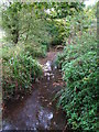 TQ4468 : The Kyd Brook west of Petts Wood by Mike Quinn