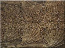 ST6316 : Fan vaulting, Sherborne Abbey by nick macneill