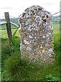 ST8035 : Bench Mark, White Sheet Hill by Maigheach-gheal