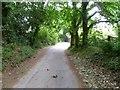 SZ0496 : Bearwood, Wheelers Lane by Mike Faherty