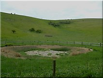 TQ2813 : Dry dew pond in Wellcombe Bottom with enclosure beyond by Shazz