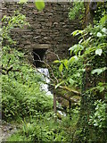 SH6541 : Stream under the wall by Paul Glover