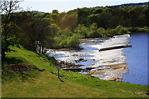 NY9170 : Chollerford Weir on the River North Tyne by Azzy