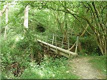 TQ4540 : An elegant footbridge by Robin Webster