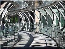 NT2574 : Bridge to Omni by Patrick Mackie