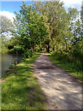 SD9201 : Towpath of the Fairbottom Branch Canal by Steven Haslington
