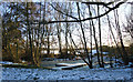 TQ5682 : Winter view, edge of Little Brick Kiln Wood, Belhus by Roger Jones