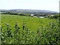 W0630 : Pasture - Inishbeg Townland by Mac McCarron