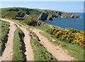 SW9981 : Coast path west of Lobber Point by Derek Harper