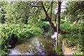 SP6102 : The millstream at Cuddesdon by Steve Daniels