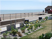 TQ7306 : New sea gardens on Bexhill promenade by nick macneill