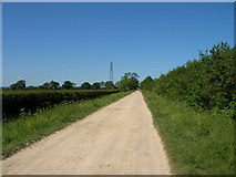 SE7674 : Low Lane (bridleway) towards the River Rye by JThomas