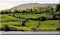 J3049 : Fields and mountains near Dromara by Albert Bridge