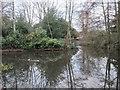 TQ4066 : Pond, Pickhurst Lane Recreation Gardens (4) by Mike Quinn