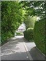 SE1334 : Wheatlands Square - Duchy Drive by Betty Longbottom