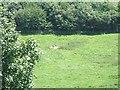 SX0041 : Isolated stone at Treveague Farm by David Smith