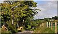 J3148 : Darby's Loanin near Dromara (7) by Albert Bridge
