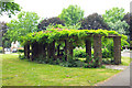 TQ3090 : Pergola, Barratt Gardens, Wood Green Common by Julian Osley