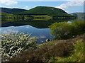 NT2523 : St Mary's Loch by Eileen Henderson