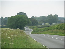ST7980 : Road to Acton Turville by Sarah Charlesworth